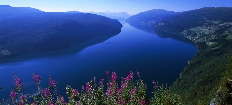 Nordfjord View
