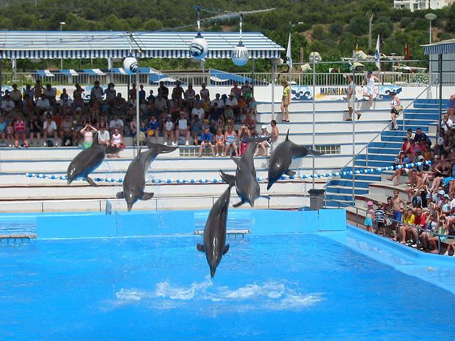 Water Park in Majorca